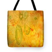 Clouds And Crystals Abstract #2 Tote Bag