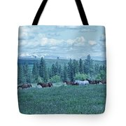 Clouds And Horses Tote Bag
