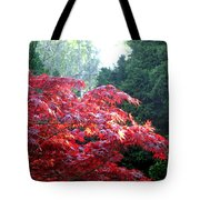 Clouds Of Leaves Tote Bag