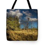 Clouds Over Mesa Verde Tote Bag
