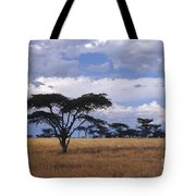 Clouds Over The Masai Mara Tote Bag