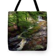 Cloughleagh Wood, Kilbride, Ireland Tote Bag