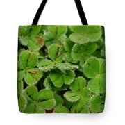 Clover Freeze Tote Bag