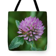 Clover In Dew Tote Bag