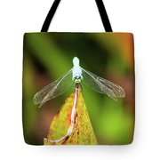 Clown Face Dragonfly Tote Bag