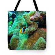 Clown2 With Anemone Tote Bag