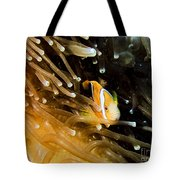 Clown3 With Anemone Tote Bag