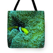 Clown4 With Anemone Tote Bag