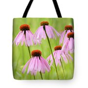 Cluster Of Cone Flowers Tote Bag