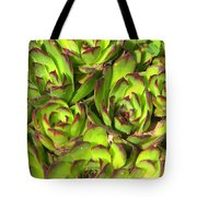 Clustered Succulents Tote Bag