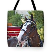 Clydesdale At Esp Tote Bag