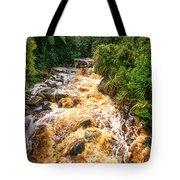 Coal Creek Rapids Tote Bag