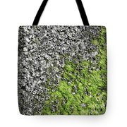 Coast - Abstract Tote Bag