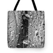 Coast - Crevice Tote Bag