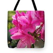 Coast Rhododendran- Washington State Flower Tote Bag
