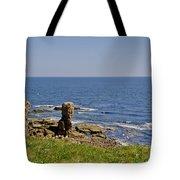 Coast. Seascape 3. Tote Bag