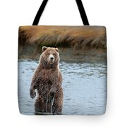 Coastal Brown Bears On Salmon Watch Tote Bag