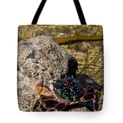 Coastal Crab Tote Bag