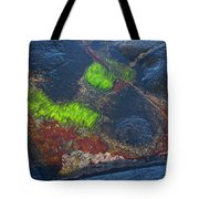 Coastal Floor At Low Tide Tote Bag