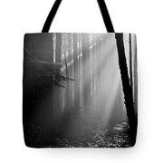 Coastal Forest 2 Tote Bag