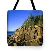 Coastal Maine Tote Bag by John Greim