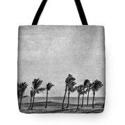 Coastal Winds Tote Bag by Evelina Kremsdorf