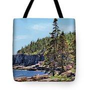 Coastline And Otter Cliff 4 Tote Bag