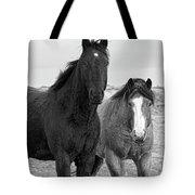 Coated Curiosity Tote Bag