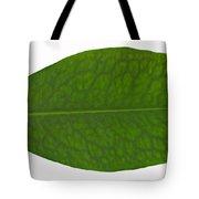Coca Leaf, Erythroxylon Coca Tote Bag