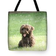 Cockapoo Puppy Tote Bag