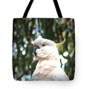 Cocky 2 Tote Bag