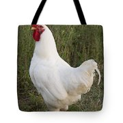 Cocky Tote Bag