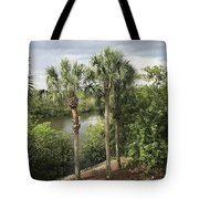 Cocohatchee River  Tote Bag