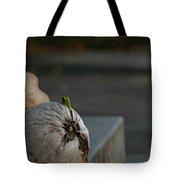 Coconut Cover Tote Bag