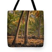 Coconut Palm Grove Tote Bag