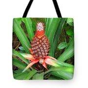 Coconut Plant Tote Bag