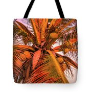 Coconut Sunset Tote Bag