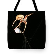 Cocooning The Victim Tote Bag