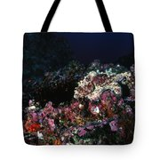 Cocos Island Octopus Hiding On Reef Tote Bag