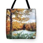 Coe Lake Fall Series 1a Tote Bag