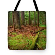 Coeur D'alene Forest Tote Bag
