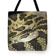 Coiled Rattlesnake Tote Bag