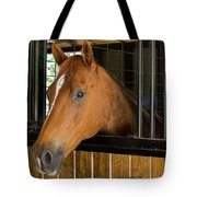 Col Snickers Tote Bag