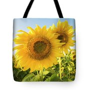 Colby Farms Sunflower Field Closeup Tote Bag