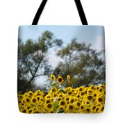 Colby Farms Sunflower Field Newbury Ma Standing Tall Tote Bag