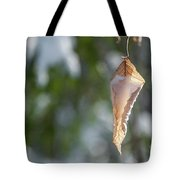 Cold Beauty Tote Bag