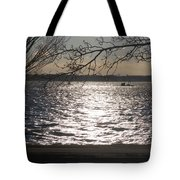 Cold, Bright, And Windy- Before The Freeze Tote Bag