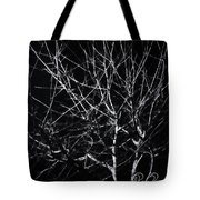 Cold Illumination Tote Bag