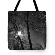 Cold Moon Tote Bag