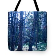 Cold Mountain Light Tote Bag